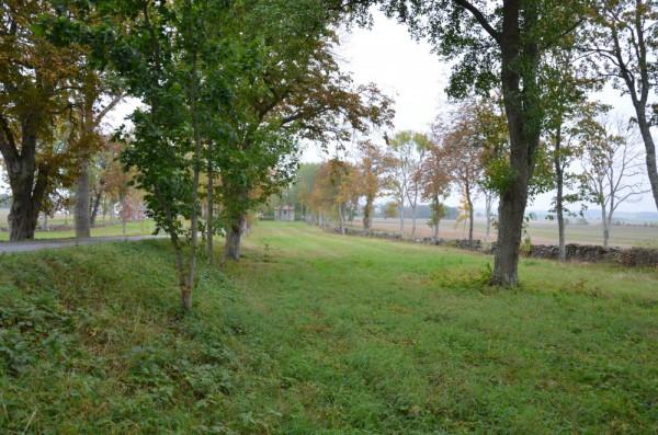 Follingbo – Norrbys änge