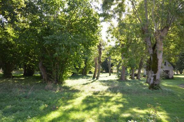 Havdhem – Kvinnegårda änge