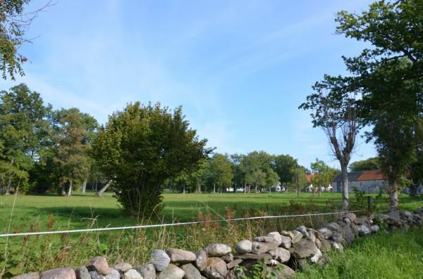 Grötlingbo – Viges änge