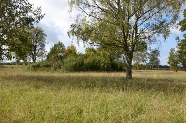 Grötlingbo – Viges slott
