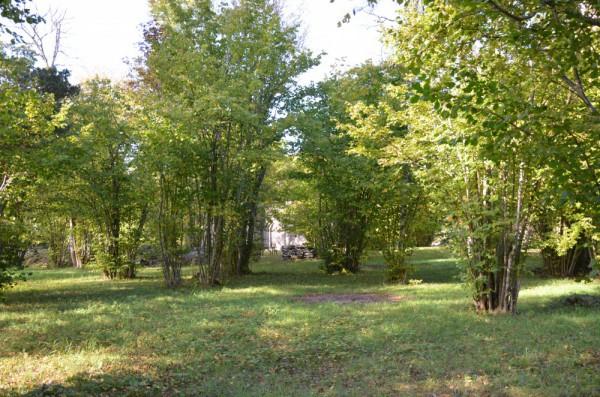 Hangvar – Elinghem kyrkänge (kring kyrkan)